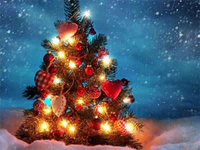 Республиканская новогодняя елка пройдет 22 декабря