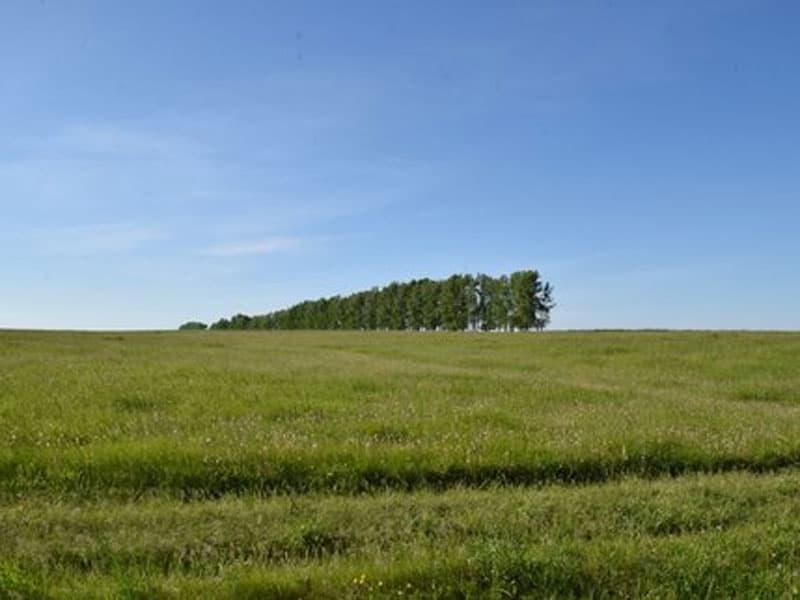 Башкирия окажет финансовую помощь сельхозкооперативам