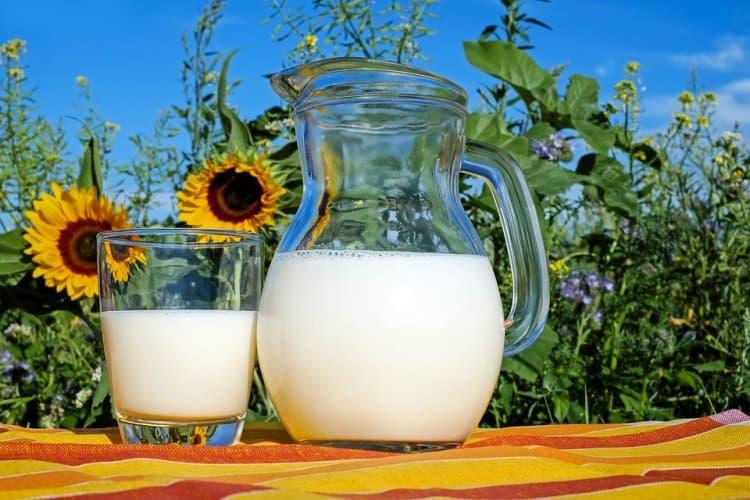 В Уфе пройдет ежегодный фестиваль «Молочная страна-2018»