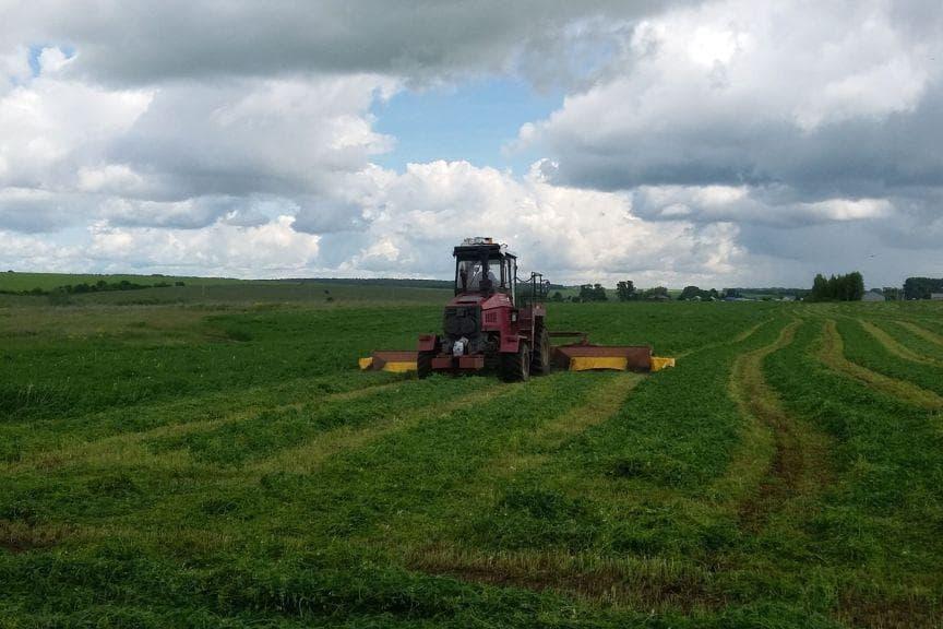 Аграрии Башкирии заготовили треть от нужных объемов сена и сенажа