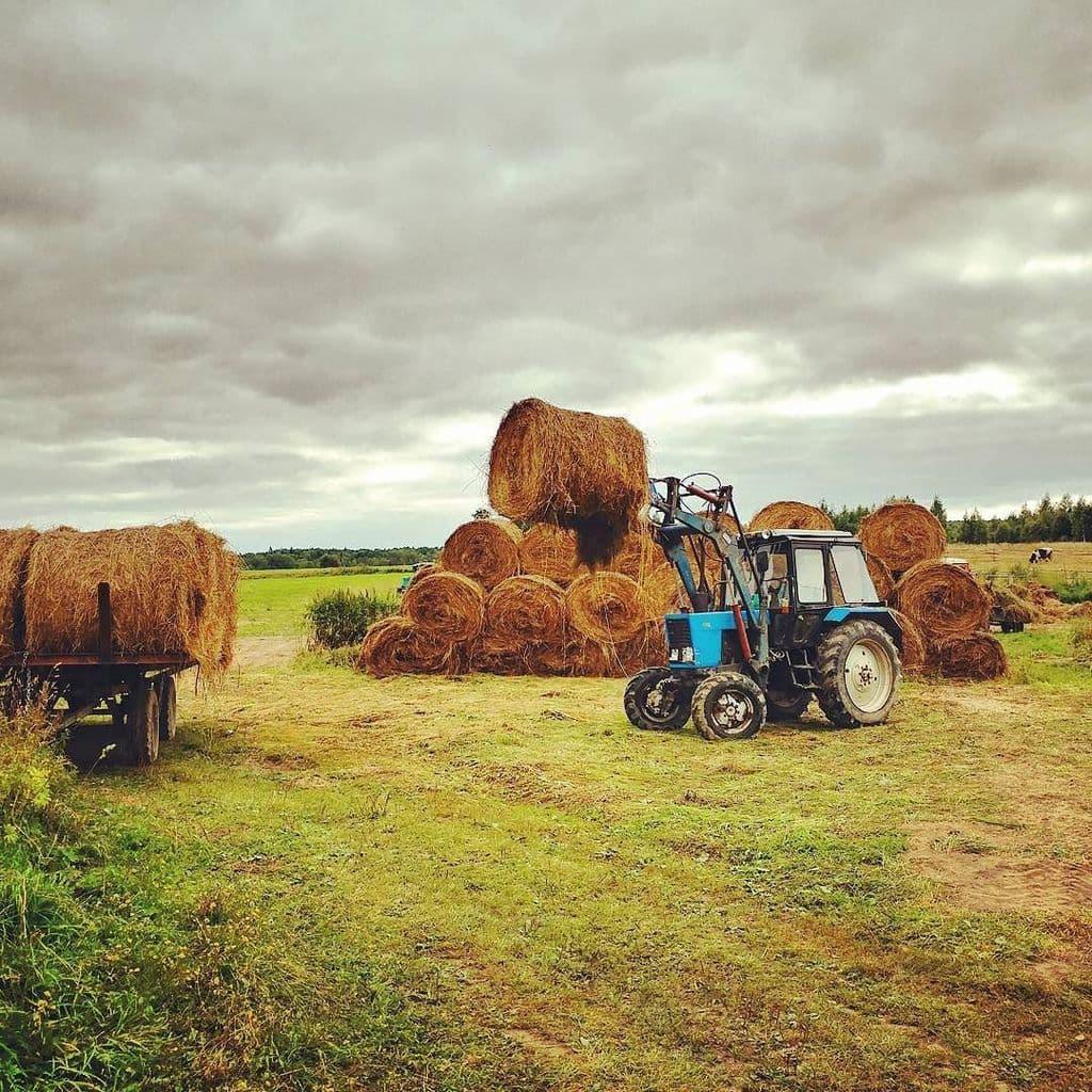 Сельхозпроизводители Башкирии перестали страховать свой урожай