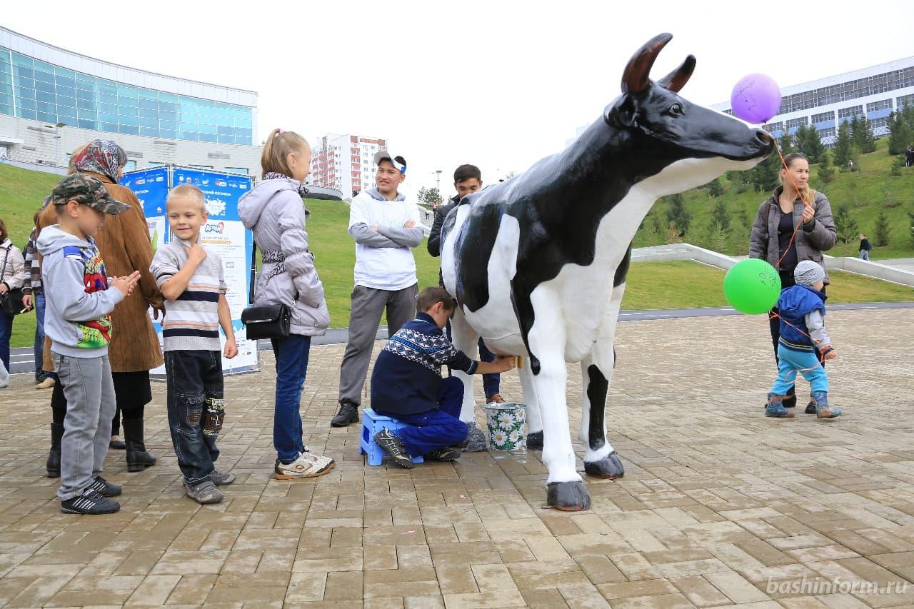 25 августа в Уфе пройдет фестиваль «Молочная страна 2018»
