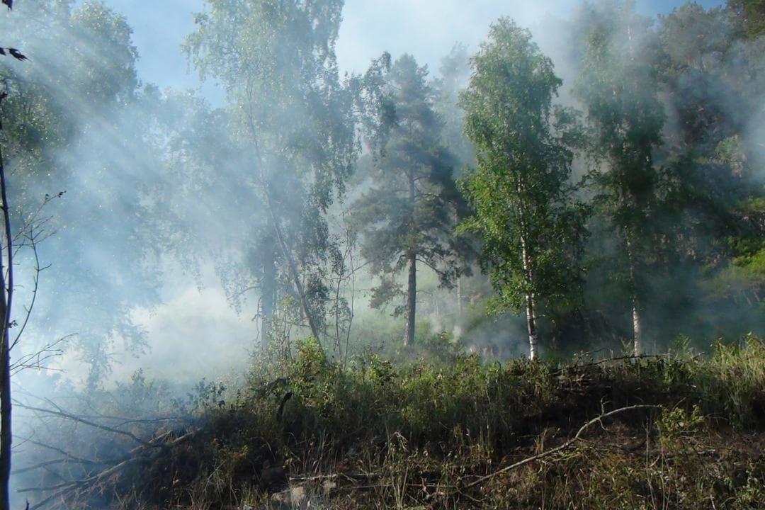 В Бурзянском районе горит лес на площади 3,5 га