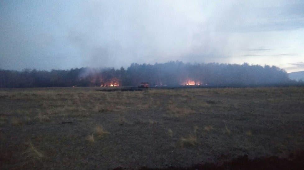 Под Сибаем уже неделю горит два гектара леса
