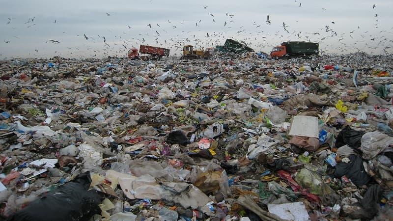 В городе Бирске начался мусорный кризис