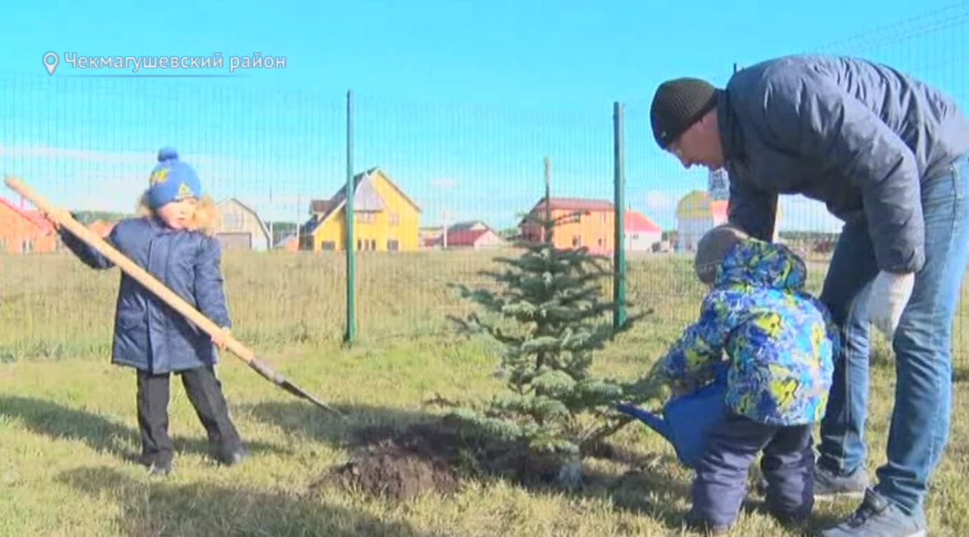 В Чекмагушевском районе высадили аллею хоккеистов