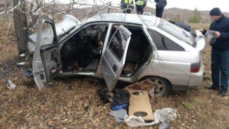 В Абзелиловском районе водитель съехал в кювет и врезался в дерево: погиб человек