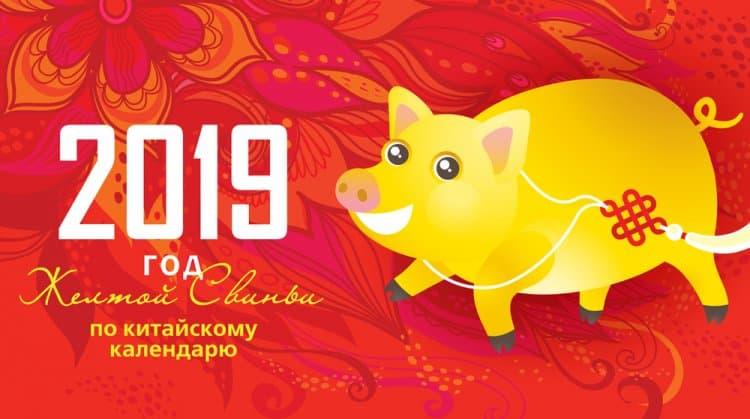 Год Свиньи: гороскоп для всех знаков зодиака на 2019 год