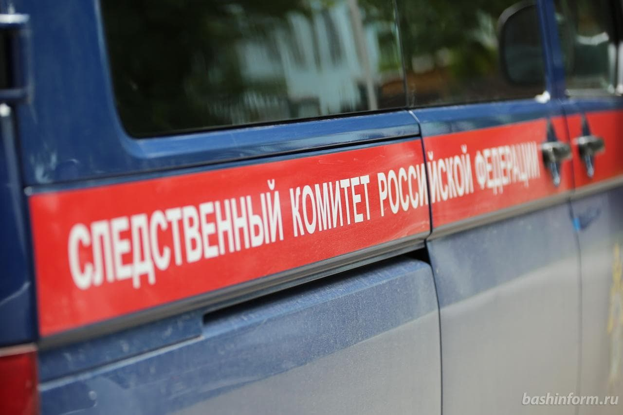 Убийством братьев-близнецов в Башкирии займется следком России