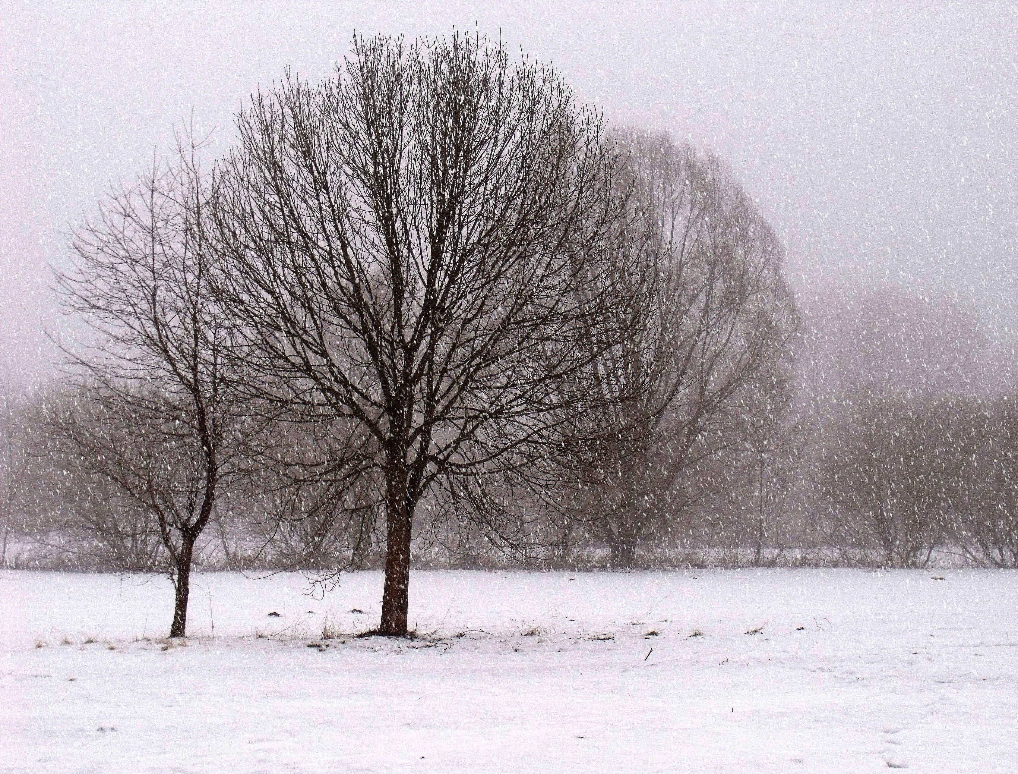 В Башкирии ожидаются снежные выходные